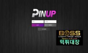 핀업 먹튀 pinup333.com 먹튀검증 먹튀확정 토토사이트 먹튀대장